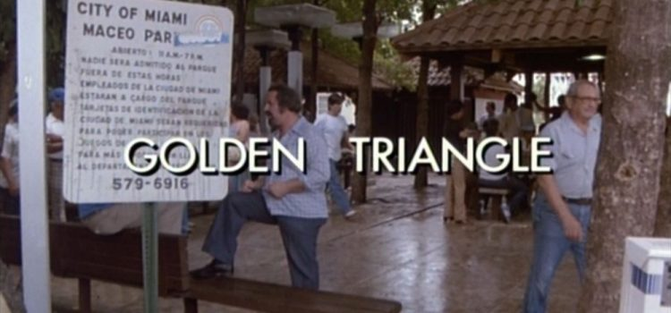 Go With The Heat 14 – Golden Triangle