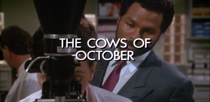 Go With The Heat 92 – The Cows of October – Music Feed Only